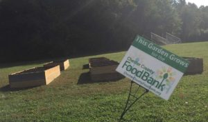 Middle School Academies look to continue with theme of sustainability