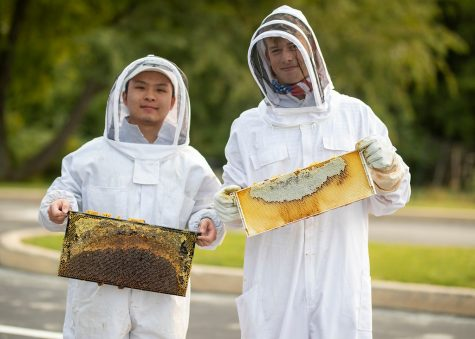 An Un-bee-lievable Grant for the Beekeeping Club